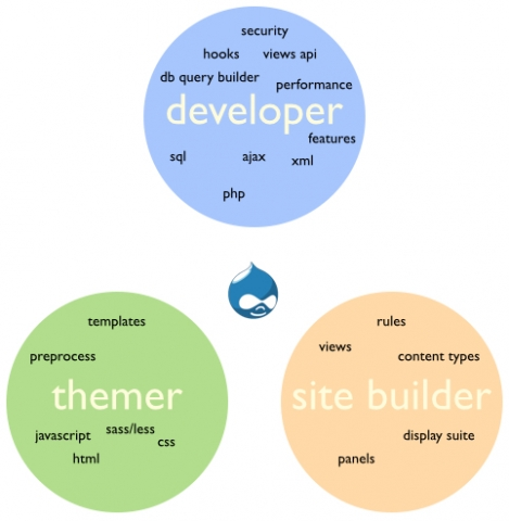 What is a drupal developer?